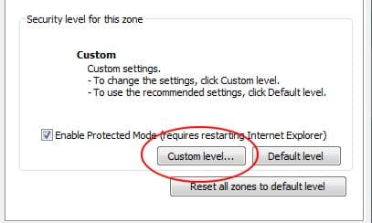 InTernet Explorer Custom Security Level
