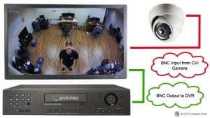 CVI Monitor BNC Input
