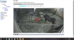 Barn Camera Live View